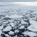 After the Arctic Ice Melts | Hon. Fran Ulmer