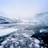 Alaska Native Perspectives of an Evolving Arctic Environment | Sarah Aarons