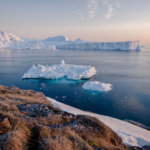 Cultivating Arctic Entrepreneurship in a Post-pandemic World | Alaska Start-Up Week Panel Discussion